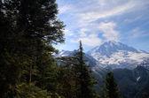 Mt. Rainier — Stock Photo