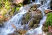 Rainier Waterfall — Stock Photo
