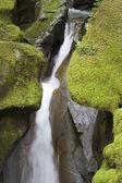 Ladder Creek Falls — Stock Photo