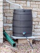 Rain Barrel — Stock Photo