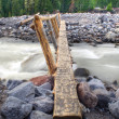 Log Bridge — Stock Photo #57009079