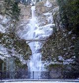 Multnomah Falls Panorama — Stock Photo