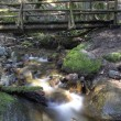 Log Bridge — Stock Photo #57038745