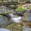 Log Bridge — Stock Photo #57039147