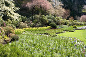 Formal Garden — Stock Photo