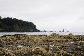 Third Beach — Foto Stock