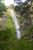Starvation Creek Falls — Stock Photo