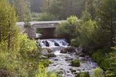 Stream and Bridge — Stock Photo