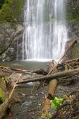 Marymere Falls — Stock Photo