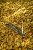 Swing and Leaves — Stock Photo