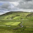 Rural Iceland Panorama — Stock Photo #60341121