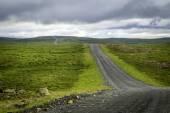 Icelandic Road — Stock Photo