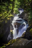 Avalanche Creek Falls — Stock Photo