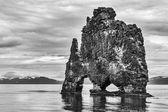 Hvitserkur, the troll rock — Stock Photo