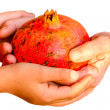 Granddaughter  giving her Grandmother Pomegranate — Stock Photo #58530801