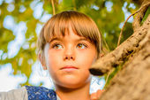 Little girl  looking from behind the tree — Stok fotoğraf