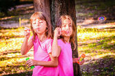 Little girls  blowing bubbles with the wand in the park — 图库照片