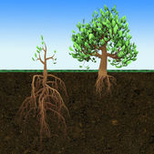 Conceptual illustration. Big tree with small roots and little  tree with large roots — Stock Photo