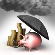 Umbrella protects piggy bank, against bad weather. Guard against crisis. — Stock Photo #56589663