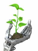 Machine and living matter. Robot holding a small sprout tree.  Conceptual 3d illustration — Stock Photo