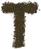 Alphabet of soil. Block capitals. Letter T — Stock Photo