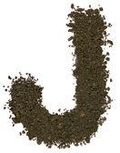 Alphabet of soil. Block capitals. Letter J — Stock Photo