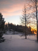 Evening rays sun — Stock Photo