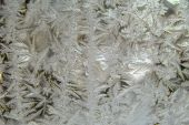 Frosty natural — Stock Photo