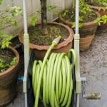 Garden hose wound — Stock Photo #57533449