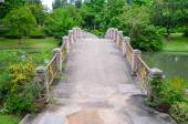 Beautiful bridge in the park — Stock Photo