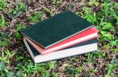 Blank book on grass in a park — Stockfoto