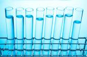 Rows of laboratory test tubes — Stock Photo