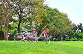 Bicicleta en el parque — Foto de Stock