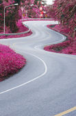 Curve of the road — Stock Photo