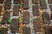 Stone walkway in garden — Stock Photo