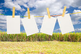Empty white photographs hanging on a clothesline with Blue Sky b — Stock Photo