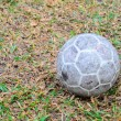 Old soccer ball on grass field — Stock Photo #57674891