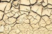 Dry crack soil — Stock Photo