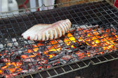 Squid are being grilled over charcoal — Stock Photo