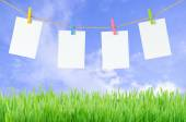 Empty white photo frames hanging with clothespins on blue sky background — Stock Photo