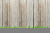 Wood wall with green grass foreground — Stock Photo