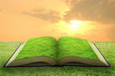 Open grass book with sky background — Stock Photo