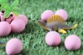 Dinosaurs eggs — Stock Photo
