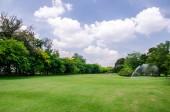 Watering in green grass field — Stock Photo