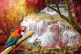 Deep forest Waterfall ,Huay Mae Khamin, Kanchanaburi ,Thailand — Stock Photo