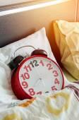 Alarm clock sleeping in bed — Stock Photo