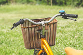 Bicycle in green park — Stock Photo