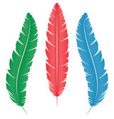 Multicolored feathers on white — Stock Vector