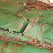 Rusted iron of a ship wreck — Stock Photo #57194827