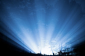 Rays of light through the night forest — Stock Photo